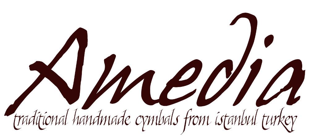 amedia-logo1000